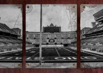 Steel-Comp-16x20-OhioStadiumField